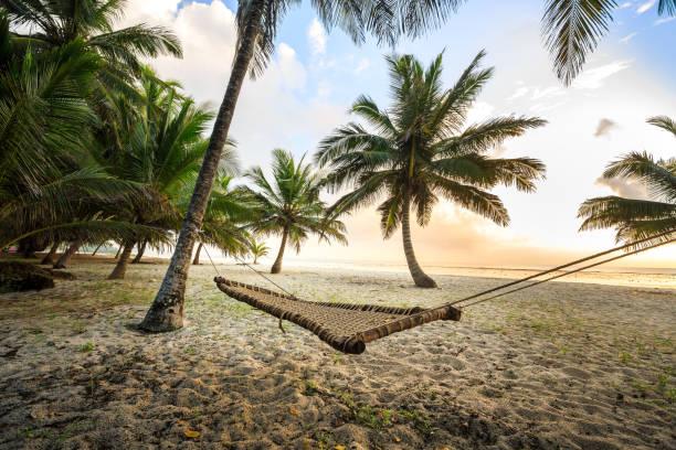 Hammock between palms on sandy beach – Foto