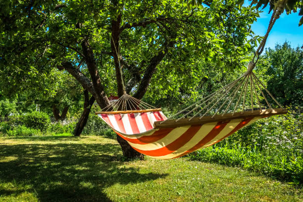 Hammock between two trees A striped hammock between two trees in a sunny green garden. Concept for holidays, summer vacation and lazy days. military private stock pictures, royalty-free photos & images