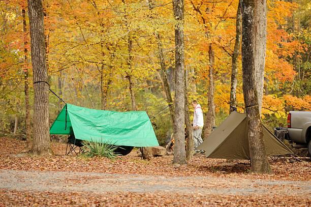 hammock camping in the autumn colors - planenzelt stock-fotos und bilder