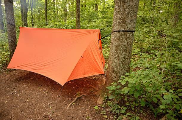 hammock camping in the wilderness - planenzelt stock-fotos und bilder