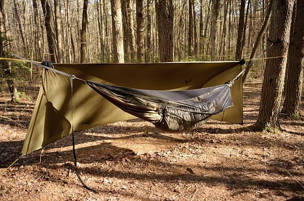 hammock camping in wooded campsite - planenzelt stock-fotos und bilder