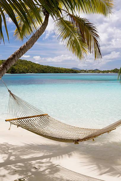 Hammock hung on palm trees on a Caribbean beach