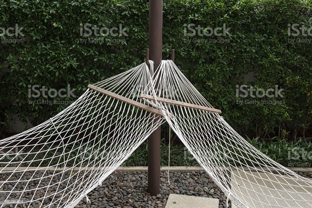 hammock in a tropical beach stock photo