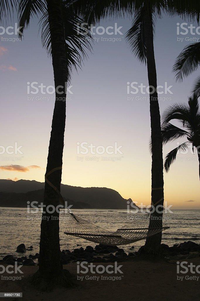 Hammock in Hawaii royalty free stockfoto