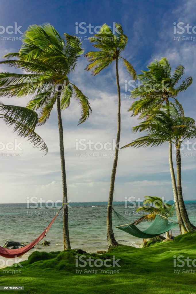 Hammock In The Shadow Of The Palm On The Tropical Beach Stock Photo