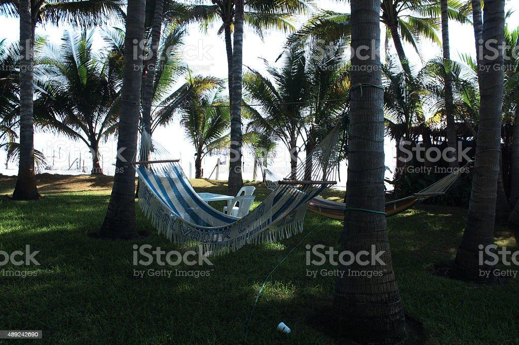 hammock on beach ranch stock photo
