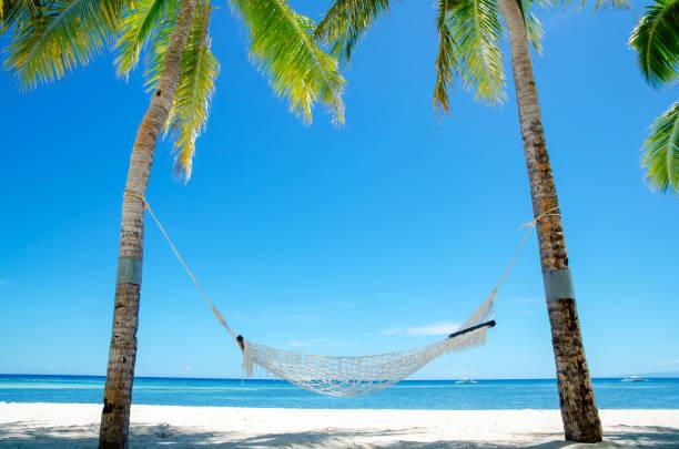 hammock on the beach - amaca foto e immagini stock