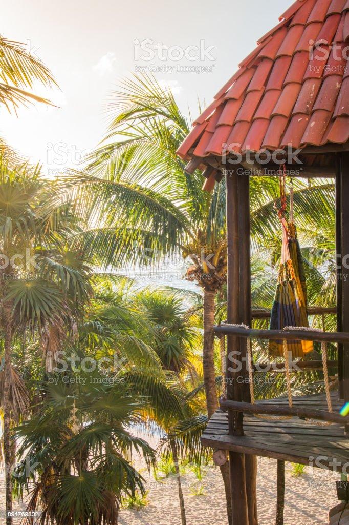 Hammock Swings Amid Palm Trees In The Tropics Stock Photo