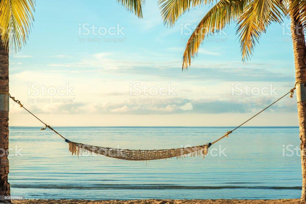 Hammock under palm trees at sunrise beach stock photo
