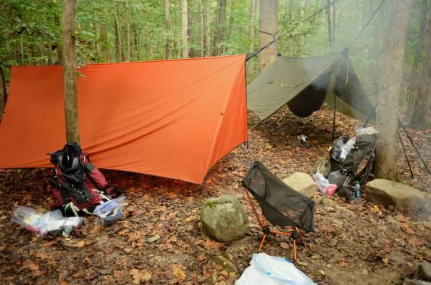 hammocks hanging in wooded campsite - planenzelt stock-fotos und bilder