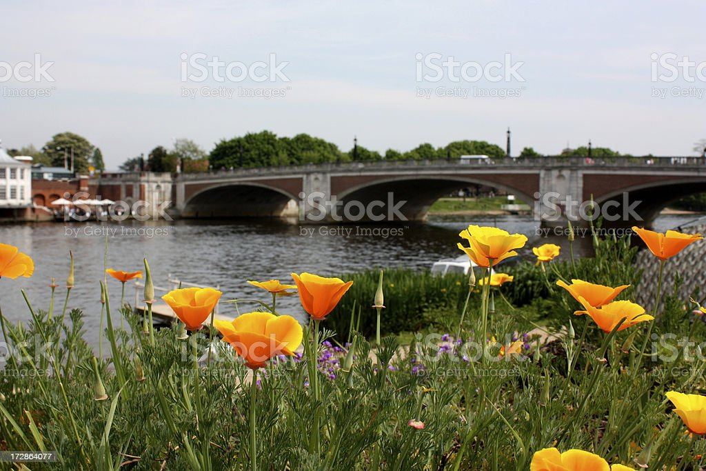 Hampton Court Riverside stock photo