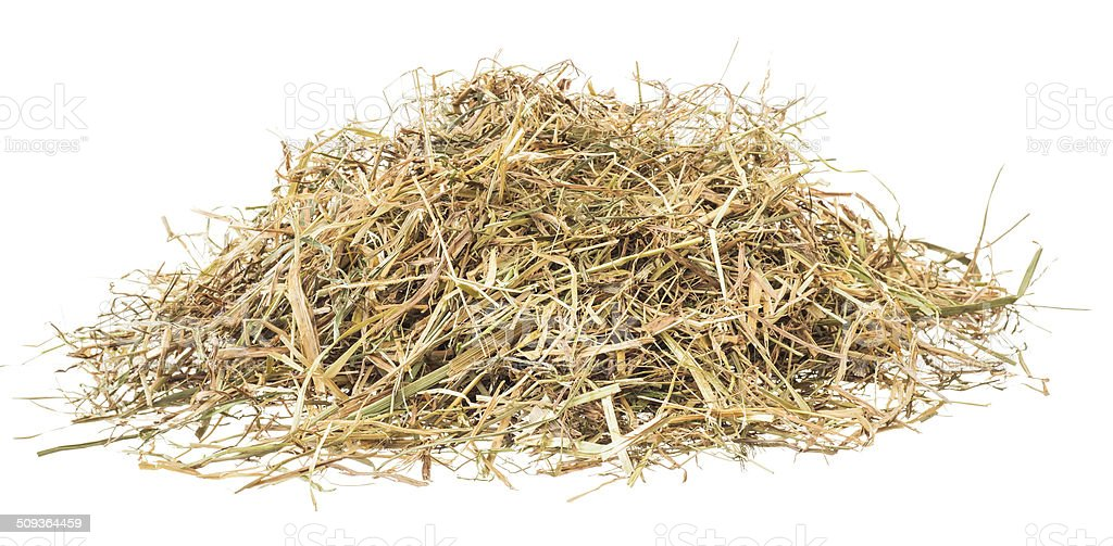 Hamster hay heap isolated on white stock photo