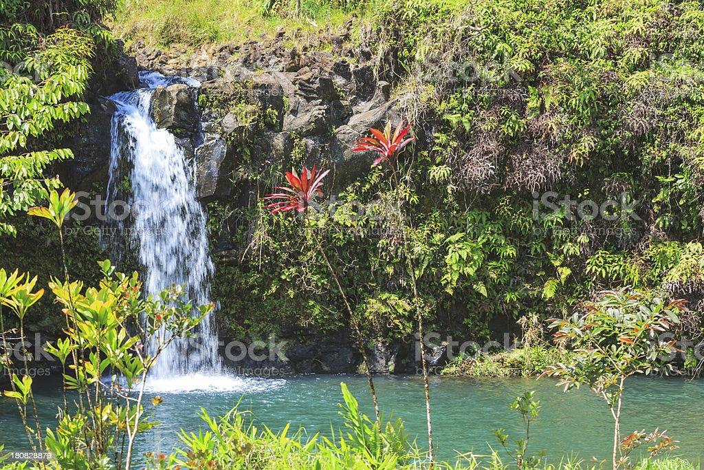 Hana Highway Waterfall stock photo