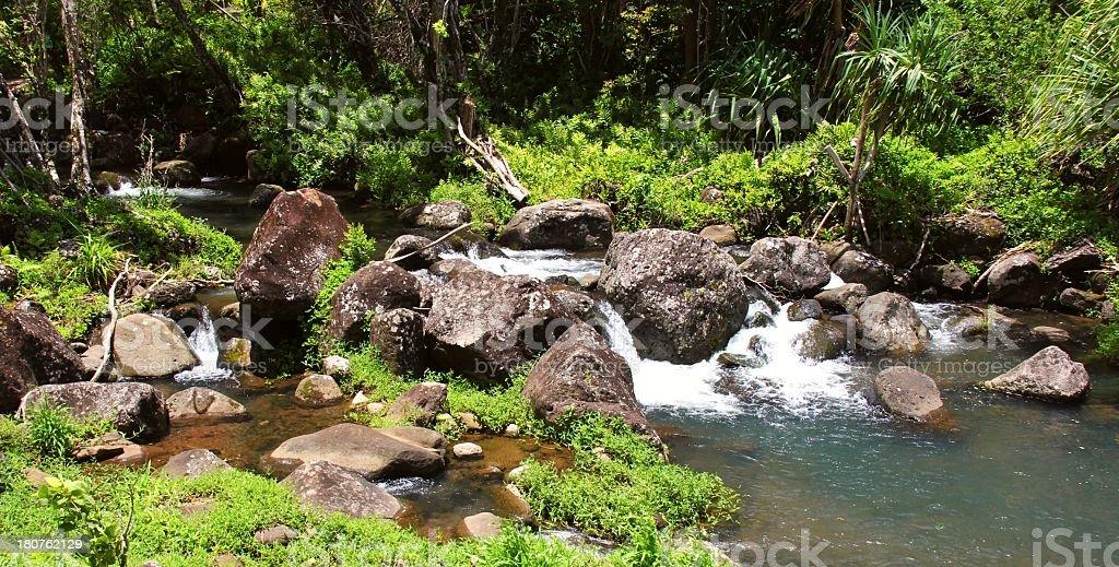 Hanalei Kauai Hawaii botanical Limahuli gardens waterfall scenic stock photo