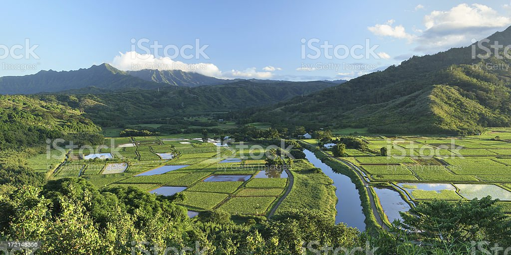 Hanalei Valley View royalty-free stock photo