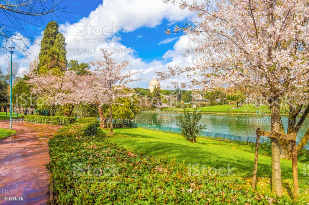 Hanami in Rome, EUR district and lake stock photo