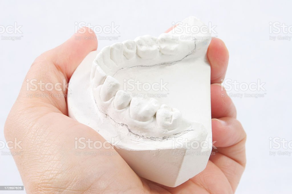 Hand and Dental plaster mould stock photo