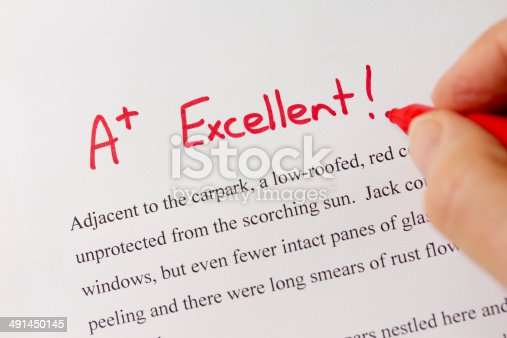 istock Hand and Red Pen Grading Successful Essay with Excellent 491450145
