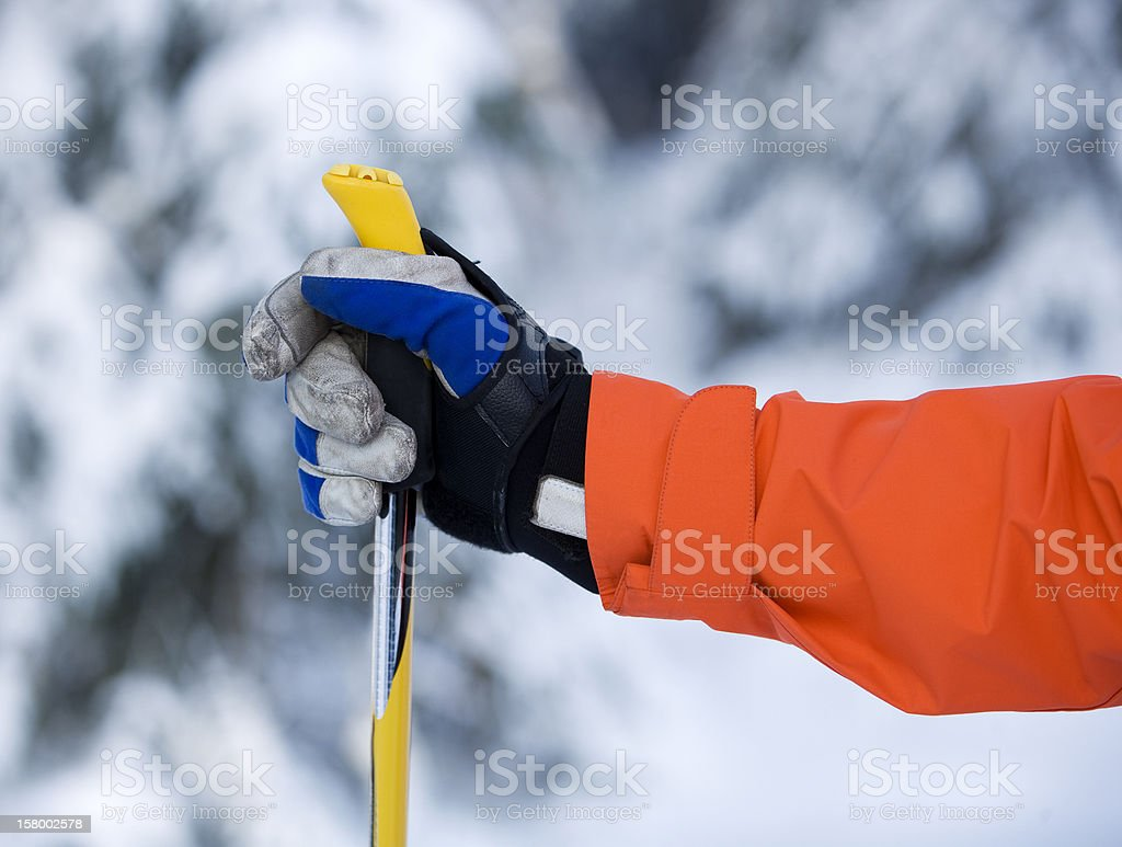 Hand and Ski Pole stock photo
