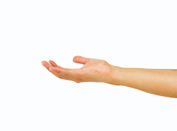 Hand asking charity picture id856174110?b=1&k=6&m=856174110&s=612x612&w=0&h=gdpgwesidr7ntbtrgrfxxp r5ungnhcm jt0hrwrm04=
