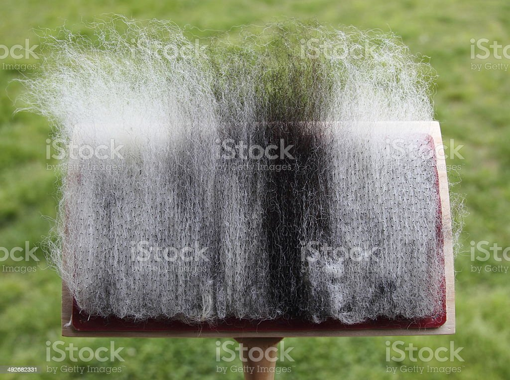 Hand Card Wool stock photo
