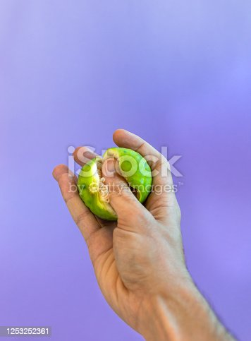 Hand crushing fresh fig on purple background. Erotic concept, food porn.