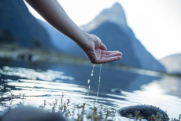 Hand cupped to catch fresh water from the lake-New Zealand stock photo