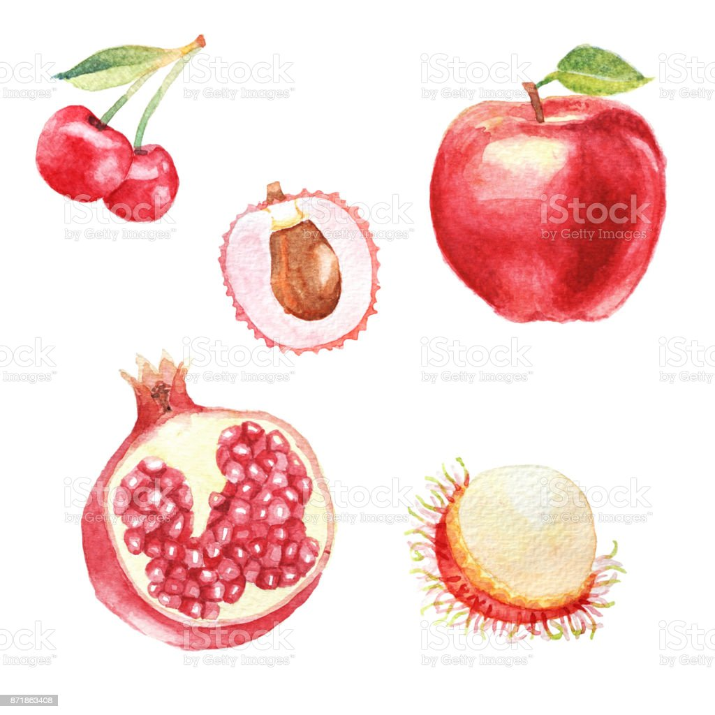 Hand dawn set with watercolor fruits, fresh food, cherry, rambutan, lychee, ruby red fruit, apple stock photo