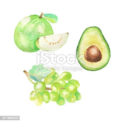 istock Hand dawn set with watercolor fruits, fresh food, guava, grape, avocado 871863332