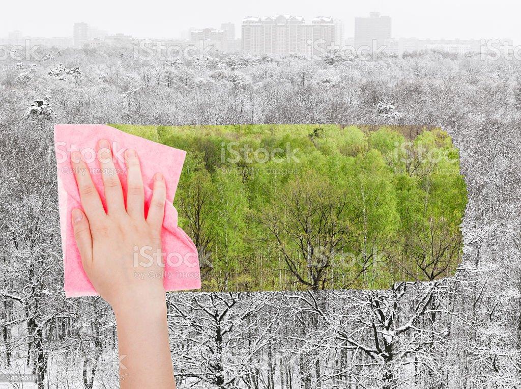 hand löscht mit rosa Tuch winter forest Lizenzfreies stock-foto