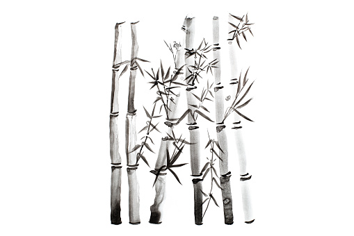 Hand drawn bamboo leaves and branch set, ink painting. Traditional dry calligraphic brush painting. (isolated on white background)