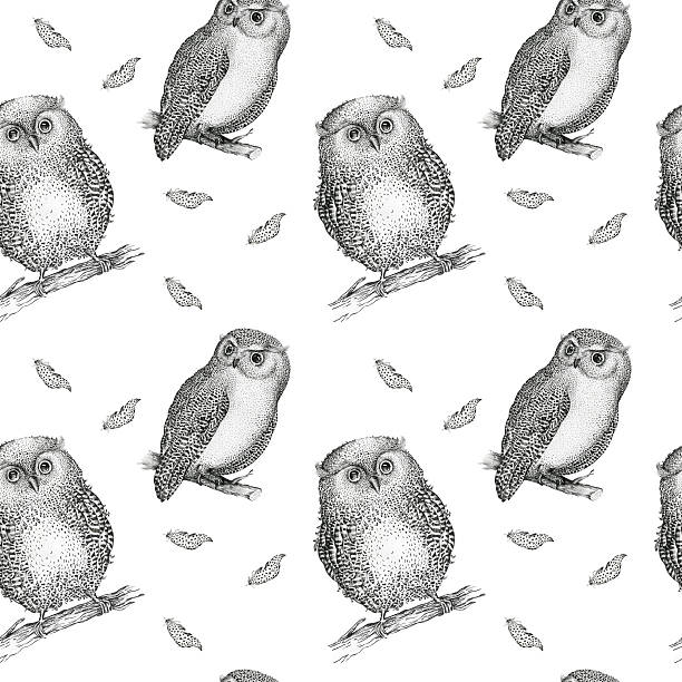 hand drawn isolated  black white seamless pattern owl fly bird. - eule zeichnung stock-fotos und bilder