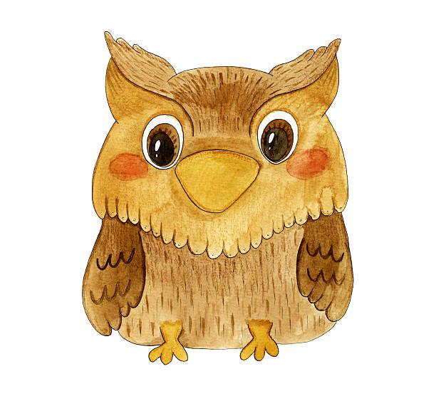hand drawn watercolor cute kids illustration with owl. - eule zeichnung stock-fotos und bilder