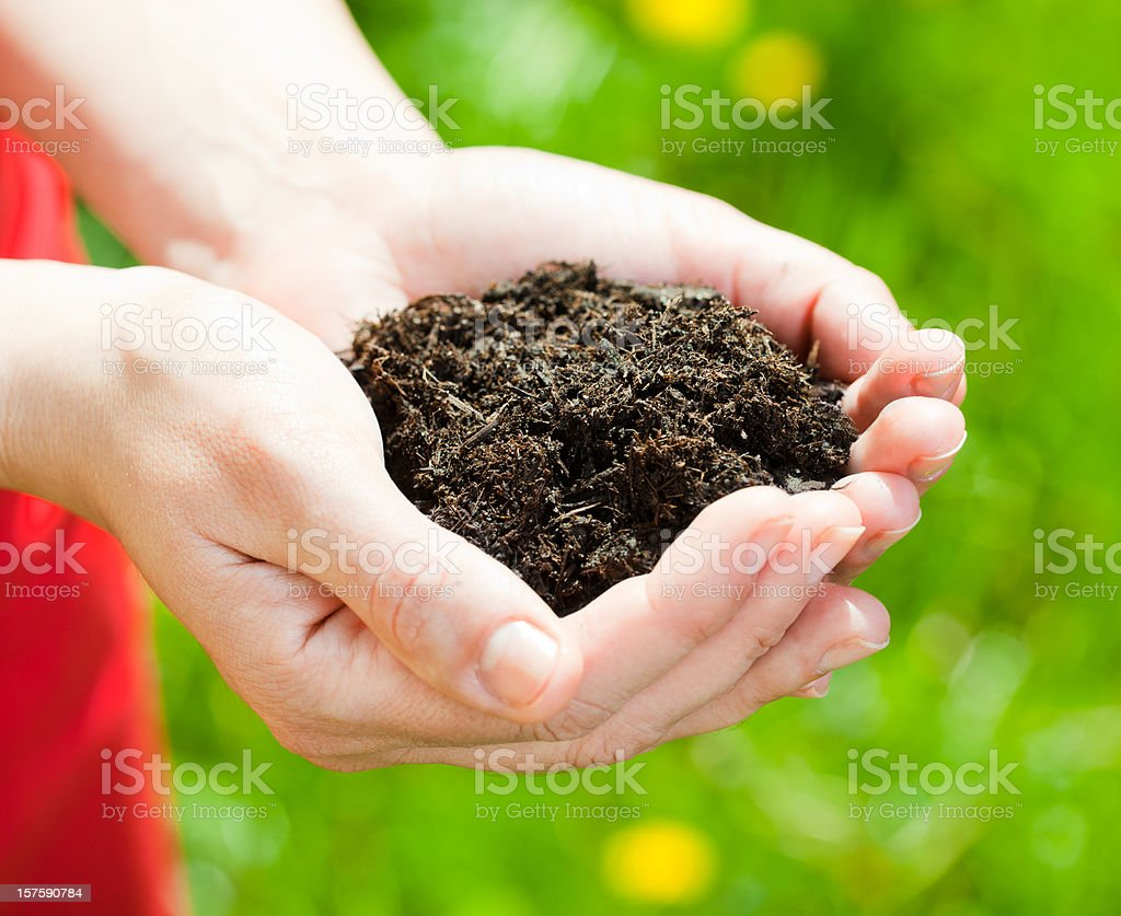 Hand full with soil royalty-free stock photo