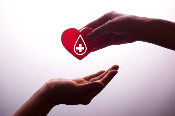 a hand gives a red heart to a hand - blood donation,world blood donor day - blood donation stock pictures, royalty-free photos & images
