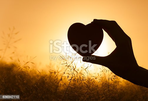 istock Hand heart in the field 636342110