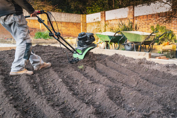 A hand held mechanical rotavator being used to reshape a garden after old turf has been removed. stock photo