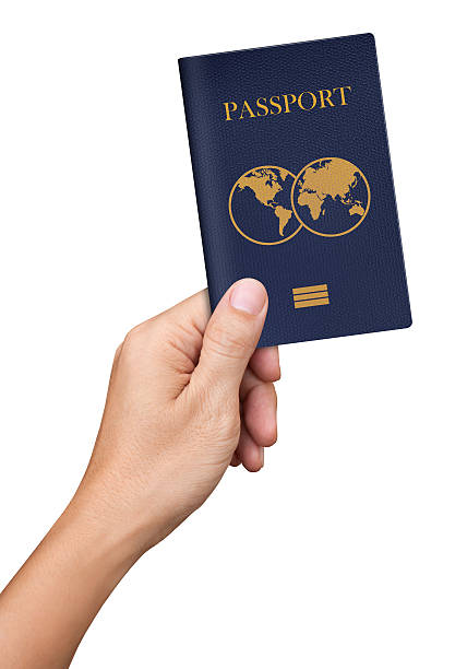 Hand hold blue Passport isolated on white background - foto de stock