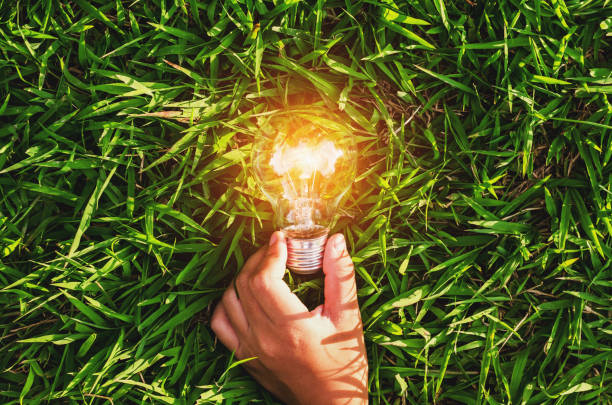 hand hold light bulb on grass  with sunset power energy concept nature stock photo