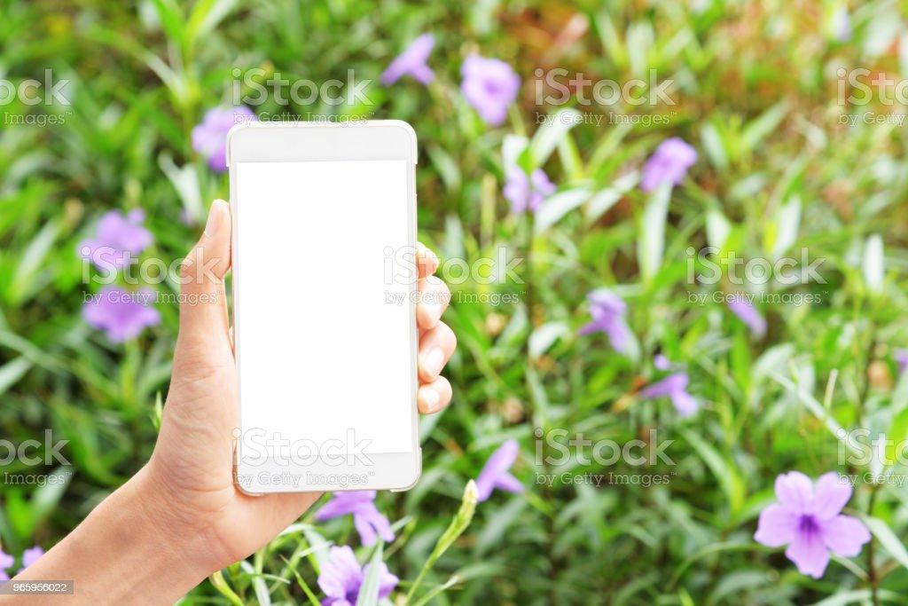 hand houden mobiele - Royalty-free Aanraken Stockfoto