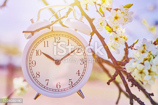 905623256 istock photo Hand hold vintage alarm clock against blue sky and blooming plant. Deadline and change time concept 1224030192