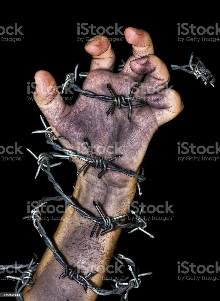 hand holding a barbed wire - Royalty-free Barbed Wire Stock Photo