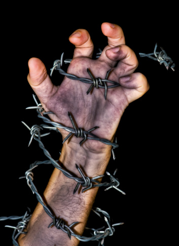 Hand Holding A Barbed Wire Stock Photo - Download Image Now
