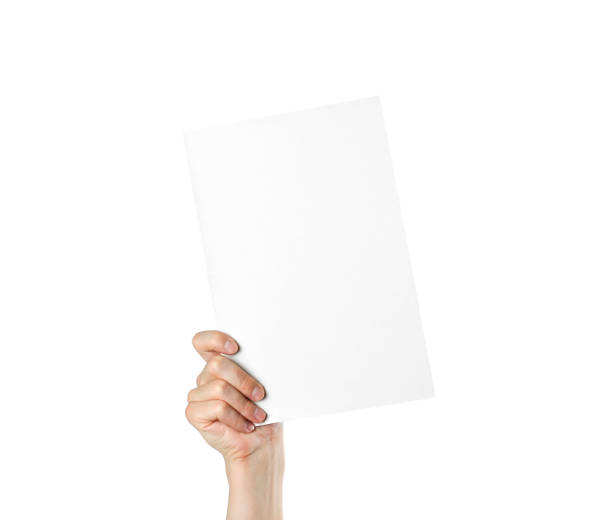 Hand holding a blank white sheet of A4 paper. Close up. Isolated on white background stock photo