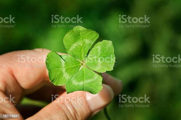 Hand holding a four leaf clover green good luck charm picture id182175341?b=1&k=6&m=182175341&s=612x612&h=rq0y0alxen1ug5ui8fu56d7nyo2rxfddy2qidapadhw=