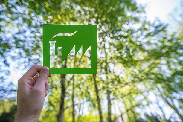 main tenant usine contre un vert forêt - écologiste rôle social photos et images de collection