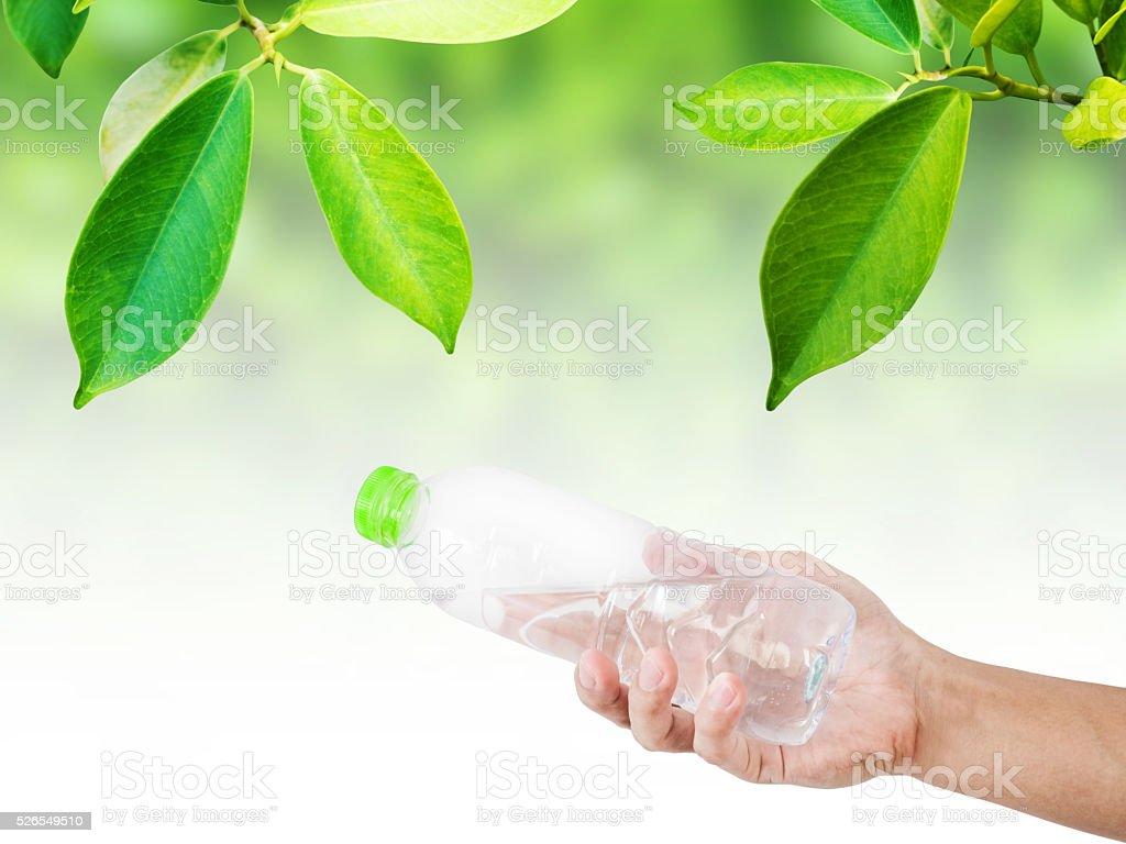 Mano Che Tiene Una Bottiglia Di Acqua E Foglia Sfondo Verde