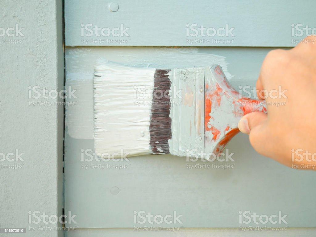 Hand holding brush painting timber wall stock photo