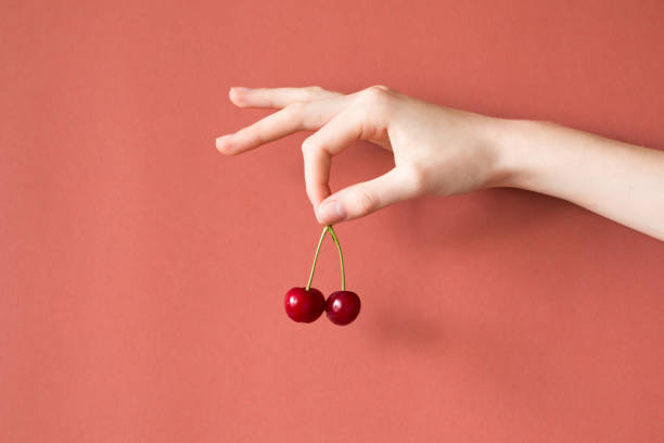 Hand holding cherries on red background , healthy raw food concept stock photo