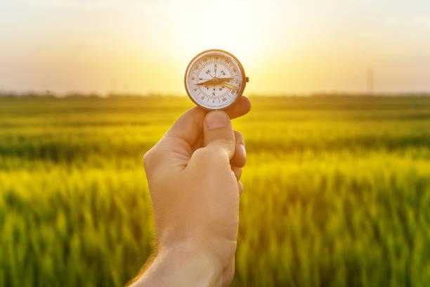 hand halten kompass und reis feld sonnenuntergang - kartographie stock-fotos und bilder
